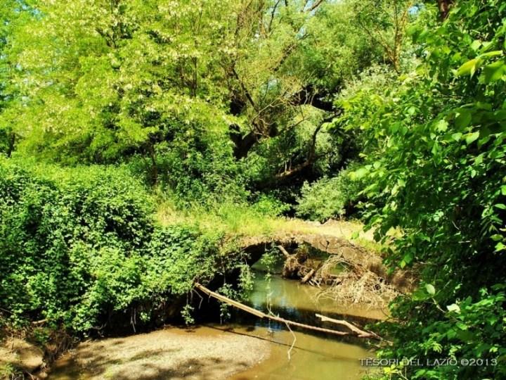 paliano_(fr)_-_ponte_de_piscoli_sul_fiume__sacco_-_foto_di_g._garofoli_(05-2013)